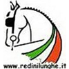 www.redinilunghe.it