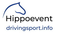 drivingsportinfo logo text