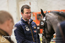 CAI W London GBR 2018   Horseinspection  22