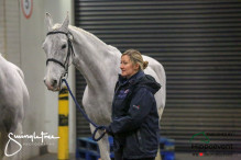 CAI W London GBR 2018   Horseinspection  34