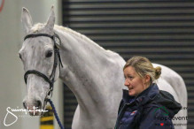 CAI W London GBR 2018   Horseinspection  35
