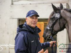 CAI W London GBR 2018   Horseinspection  38