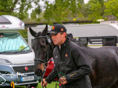 RWHS CHIO Horseinspection  17
