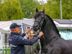 RWHS CHIO Horseinspection  22