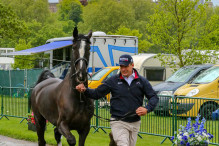 RWHS CHIO Horseinspection  24