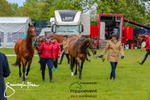 RWHS CHIO Horseinspection  29