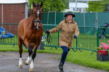 RWHS CHIO Horseinspection  33