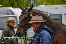 RWHS CHIO Horseinspection  3