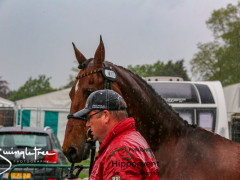 RWHS CHIO Horseinspection  42
