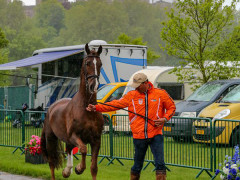 RWHS CHIO Horseinspection  44
