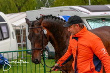 RWHS CHIO Horseinspection  48