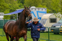 RWHS CHIO Horseinspection  4