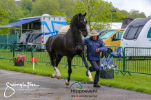 RWHS CHIO Horseinspection  6