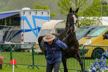 RWHS CHIO Horseinspection  8