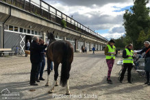 a Nordic Baltic Championships 2019   CHECK IN  11