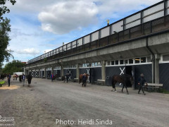 a Nordic Baltic Championships 2019   CHECK IN  15