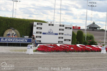 a Nordic Baltic Championships 2019   HORSEINSPECTION  12