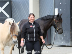 a Nordic Baltic Championships 2019   HORSEINSPECTION  1