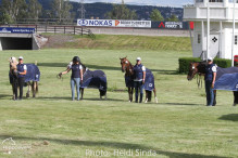 a Nordic Baltic Championships 2019   HORSEINSPECTION  20