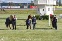 a Nordic Baltic Championships 2019   HORSEINSPECTION  23