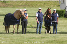 a Nordic Baltic Championships 2019   HORSEINSPECTION  24