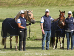 a Nordic Baltic Championships 2019   HORSEINSPECTION  25