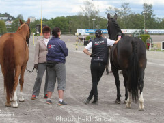 a Nordic Baltic Championships 2019   HORSEINSPECTION  9