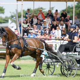 Driving Falsterbo SWE 201912