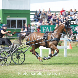 Driving Falsterbo SWE 201913