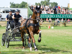 Driving Falsterbo SWE 201914