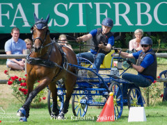 Driving Falsterbo SWE 201916