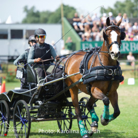 Driving Falsterbo SWE 201917