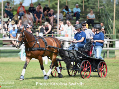 Driving Falsterbo SWE 201919