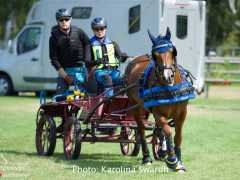 Driving Falsterbo SWE 201923