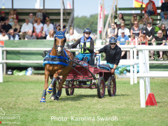Driving Falsterbo SWE 201924