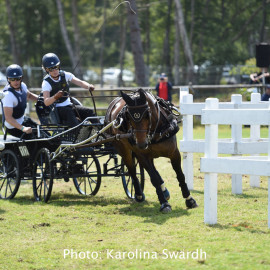 Driving Falsterbo SWE 201929