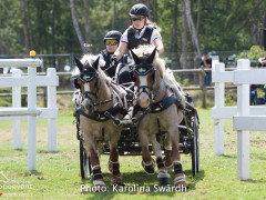 Driving Falsterbo SWE 201930