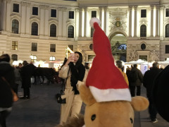Advent in Wien  11