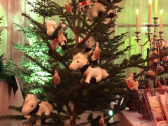 Advent in der Wiener Stallburg SRS  8