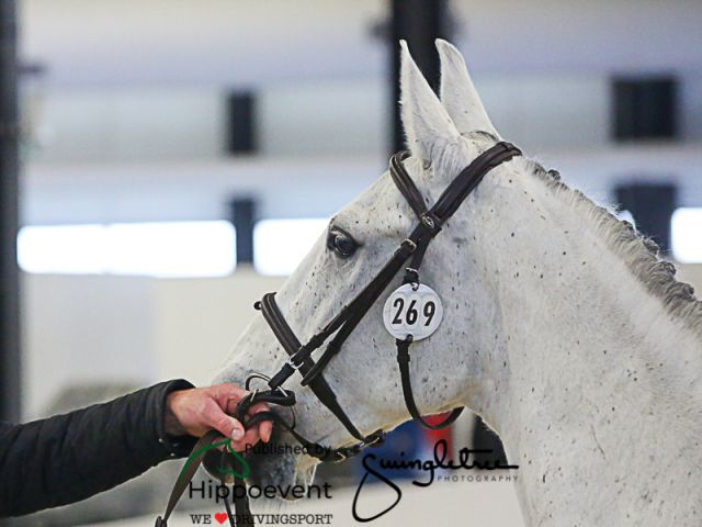 FEI World Cup™ Final Bordeaux FRA 2020 - Horseinspection
